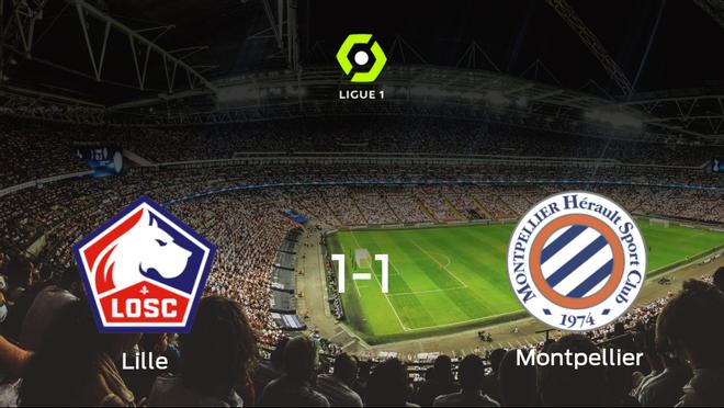Reparto de puntos entre el Lille OSC y el Montpellier (1-1)