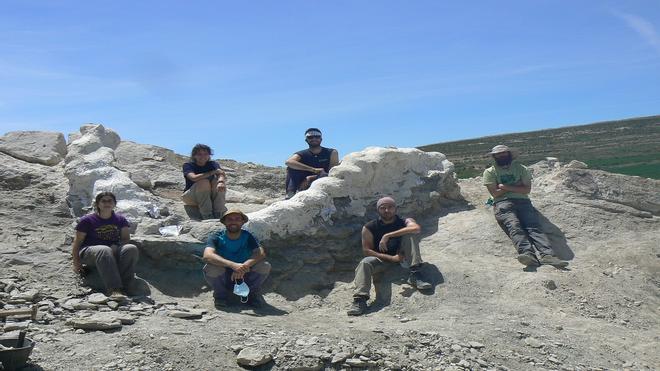 Descubren cinco metros de columna vertebral de dinosaurio en Teruel