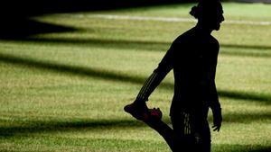 Ibrahimovic, en la sombra