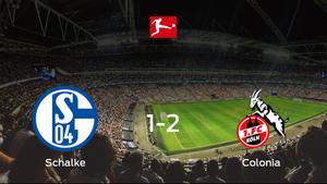 El Colonia se lleva la victoria después de derrotar 1-2 al Schalke 04
