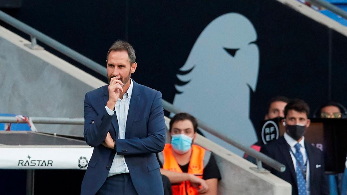 Vicente Moreno, durante el partido en el RCDE Stadium