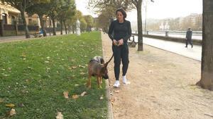 Capítulo 4: Trucos para pasear con tu perro