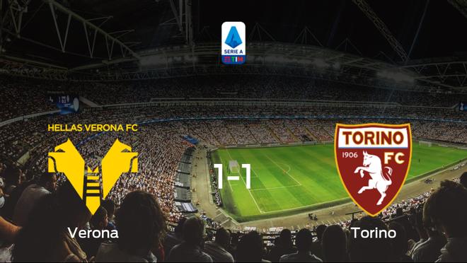 El Hellas Verona y el Torino firman tablas en el Estadio Marcantonio Bentegodi (1-1)