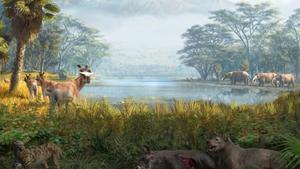 Los ecosistemas sobreviven a las especies que desaparecen