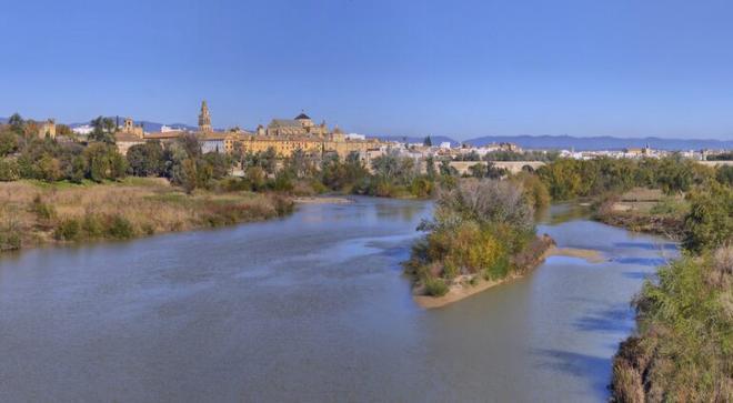 El río Guadalquivir ya tiene más peces exóticos que autóctonos
