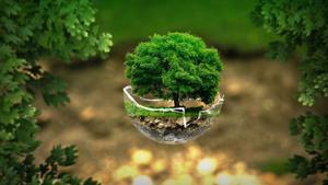 Cómo crear tu propia rutina 'ecofriendly'