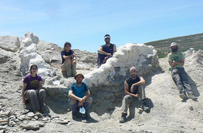 Descubren en Teruel la columna vertebral de un dinosaurio gigante