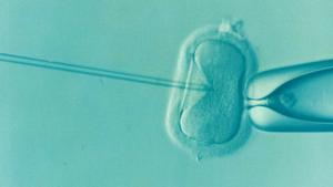 La infertilidad, un tema delicado