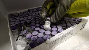 La vacuna de Pfizer puede almacenarse a temperaturas superiores a los -70ºC de ahora
